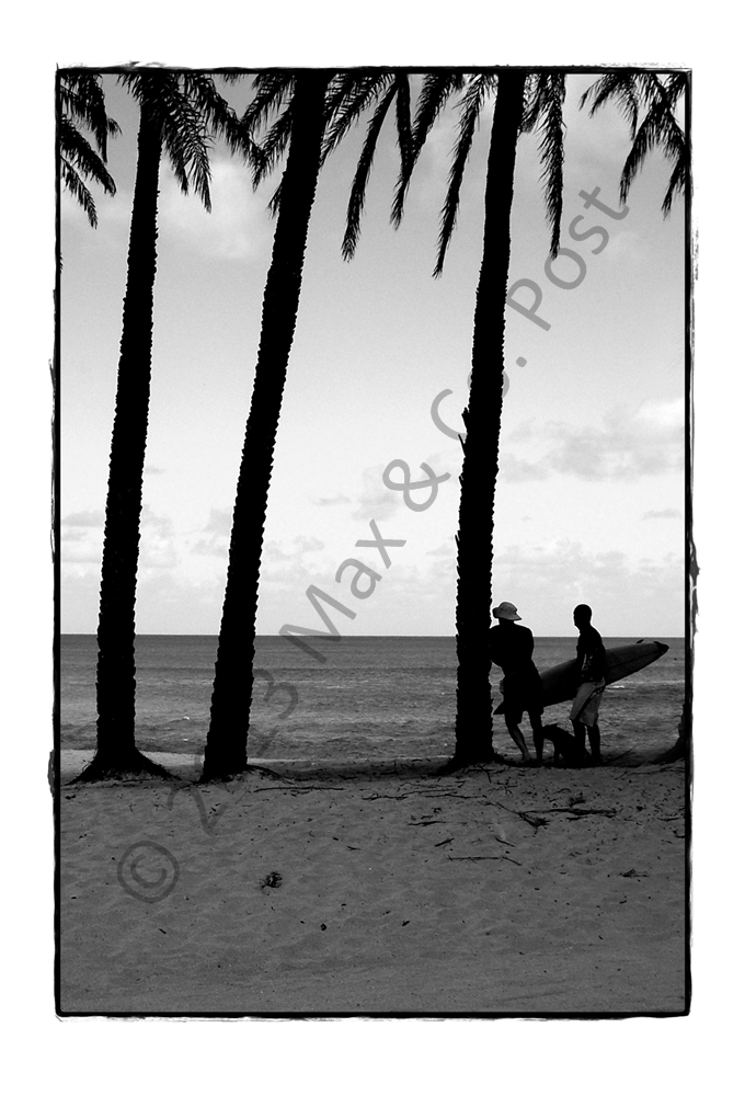 Black And White Postcard From >> Hawaii Surfer B W Beach Postcard Max Co Post